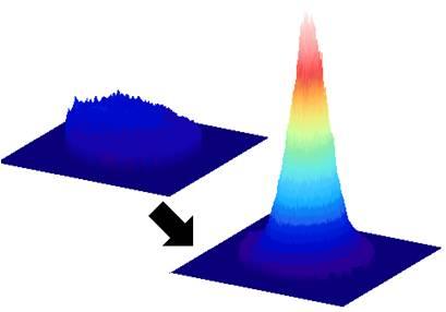 Bose Einstein condensation in a microcavity at room temperature